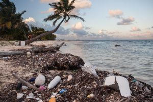 The price we pay for plastic: Saving the ocean from one of the world's worst addictions
