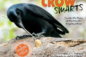 Crow Smarts cover
