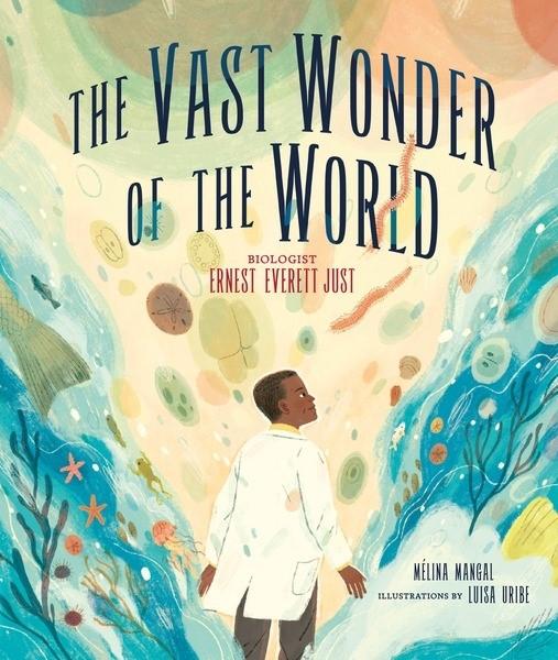 Vast Wonder of the World cover