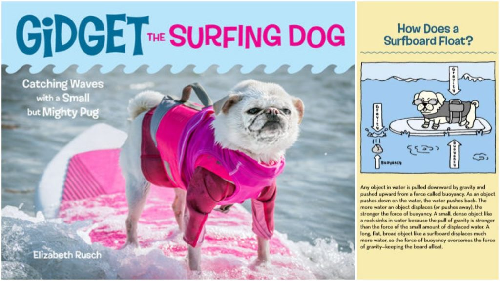 Bring science to life cover with Buoyancy