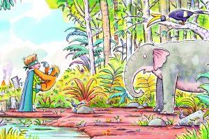 rainforest spread 14_15_CGTM