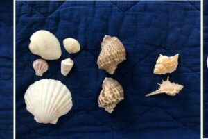 Shell sorting multiple small