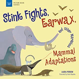 Adaptations - Mammals
